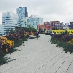 High Line - Briana Lee